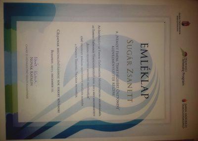 Nemzeti tehetség ösztöndíj nyertes